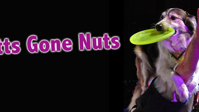 FSCJ Artist Series Presents Mutts Gone Nuts!