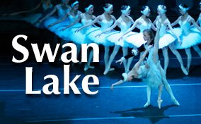 Swanlake284x176