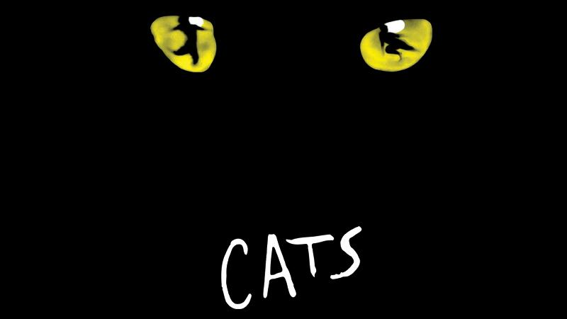 High School Summer Musical Theatre Experience Presents CATS July 22-31!